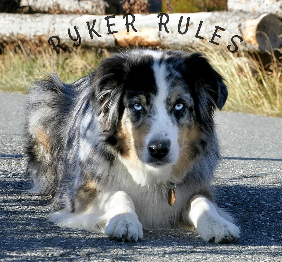 Ryker Rules Alaska