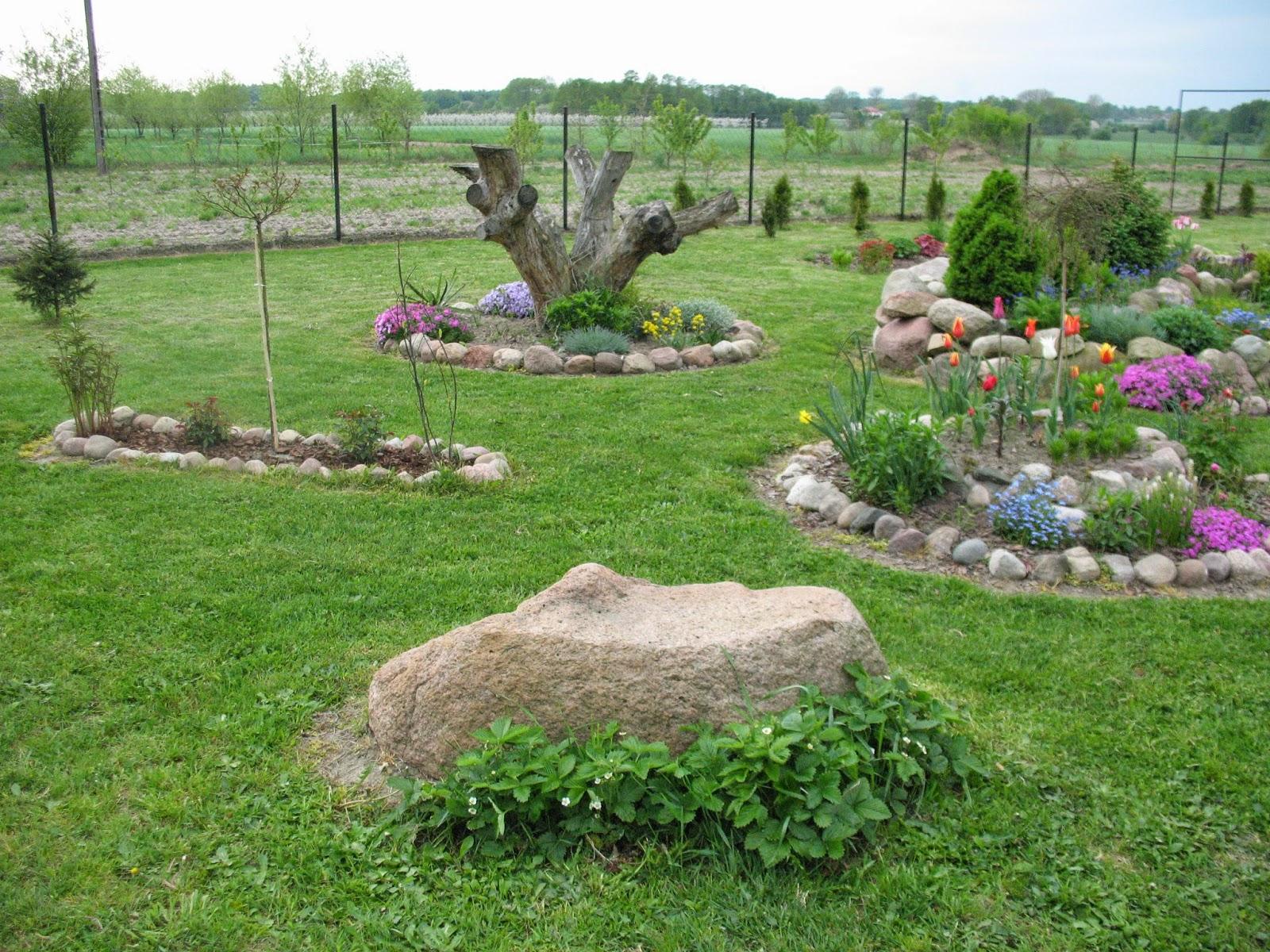 ogrody przydomowe skalniaki pictures - photo #5