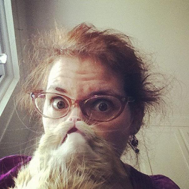 Cat Beard Meme
