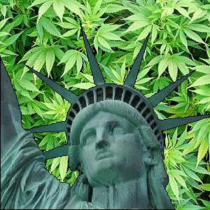descriminalização da maconha no mundo