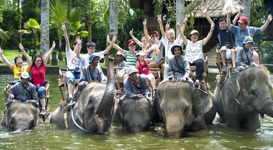 Things to do in Bali is Bali Safari & Marine Park 5