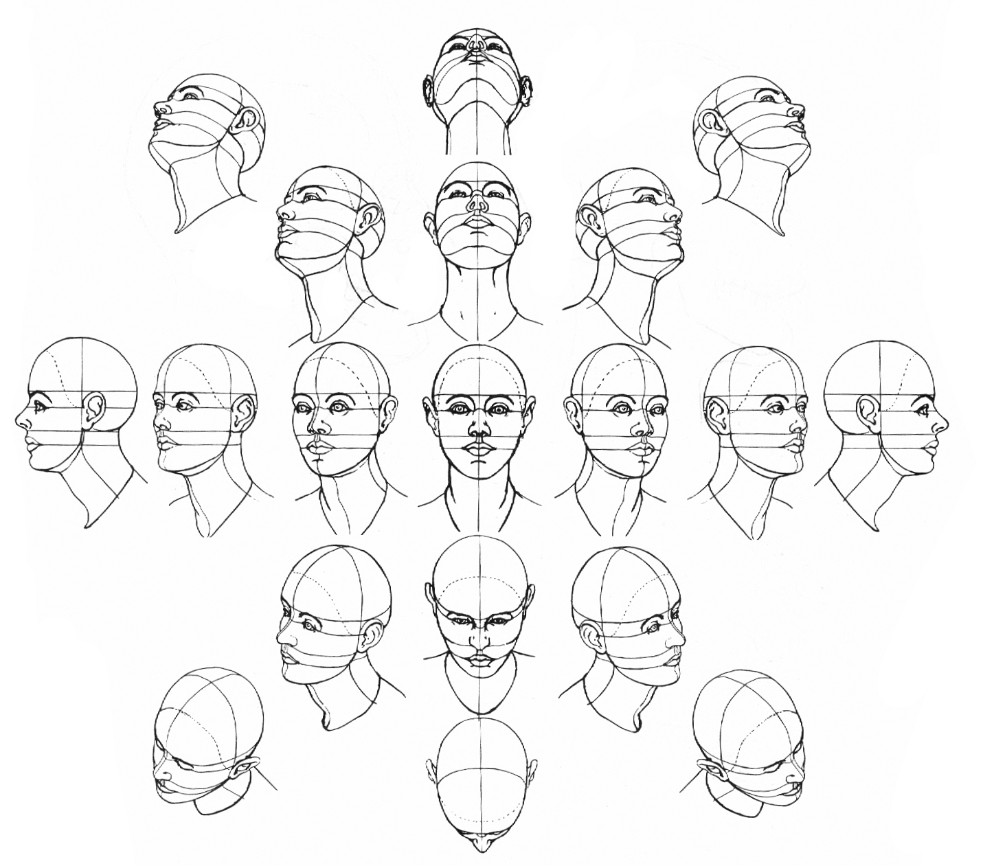 worksheet Angle Drawing jeff searle drawing the head from different angles you should study this and copy each angle shown but of course that isnt enough need to draw as many real peoples heads can