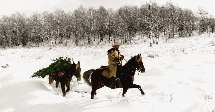 bringing in the tree estes park - Colorado Christmas