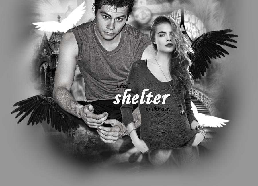Shelter FF