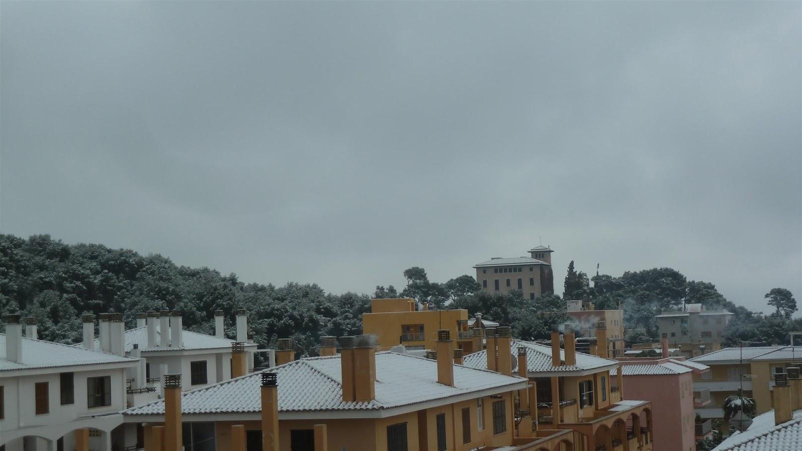 220 Berwintern Auf Mallorca Nun Ist Der Schnee Auch In Cala