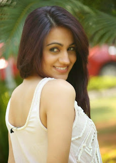 Aksha Pardasany lovely Transparent Tank top White Trousers at Dr Saleem Movie Success Meet