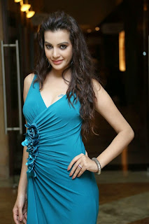 Diksha Panth New  Spicy Picture Shoot Stills001.jpg