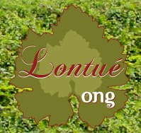 Lontue Ong