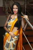 Lavanya Tripathi glam pics in saree-thumbnail-19