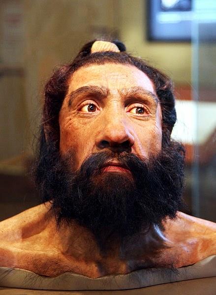 Gambar Manusia Purba - Homo Neanderthalensis