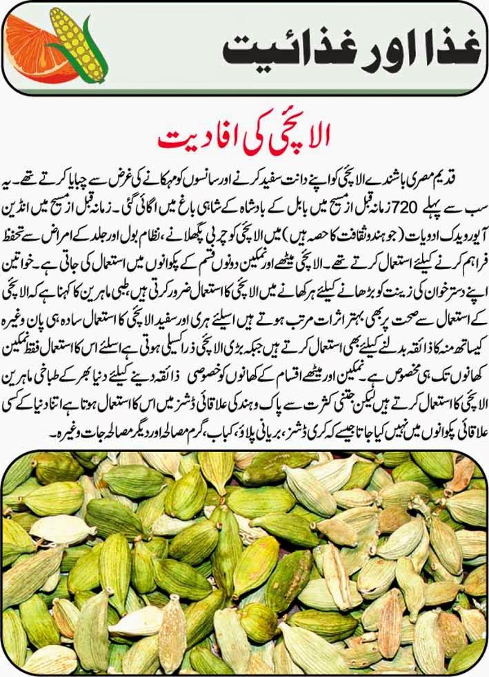 Elaichi benefits urdu elaichi ke faide urdu elaichi