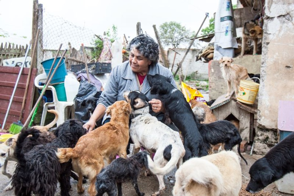"""Maria Cristina Gomes começou a recolher cães da rua há dez anos: """"Não tenho medo, pego até sarna deles"""""""