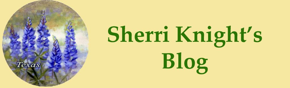 Sherri Knight's Blog