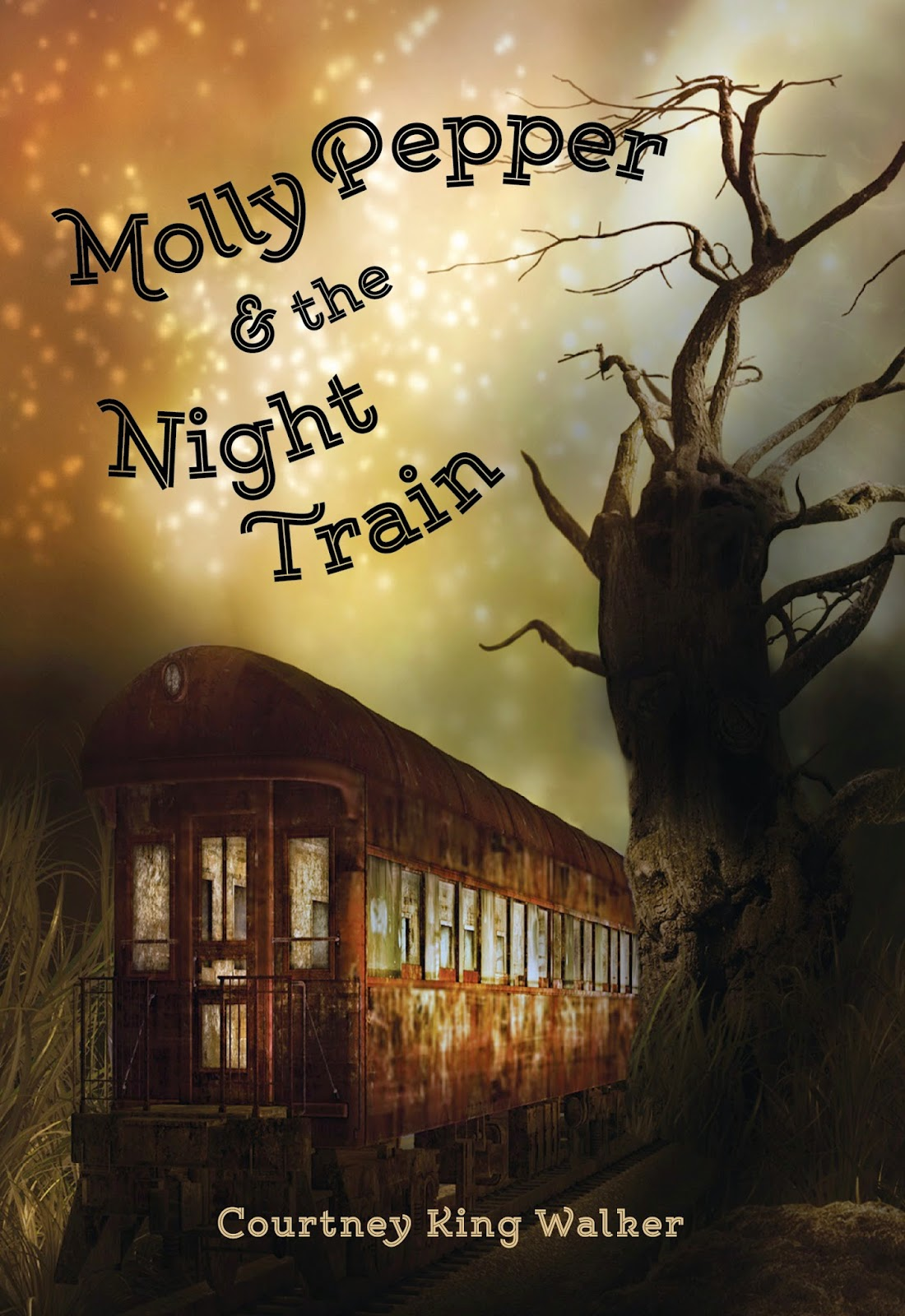 https://www.goodreads.com/book/show/23008023-molly-pepper-and-the-night-train