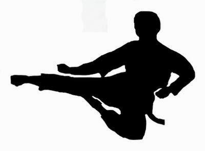 karate kid jump kick foot fist