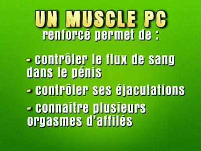 renforcer son muscle PC