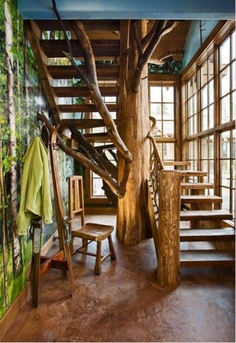 schody drzewo