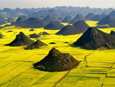 Gambar Pemandangan Indah kuning