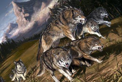 Lobos.jpg (825×556)
