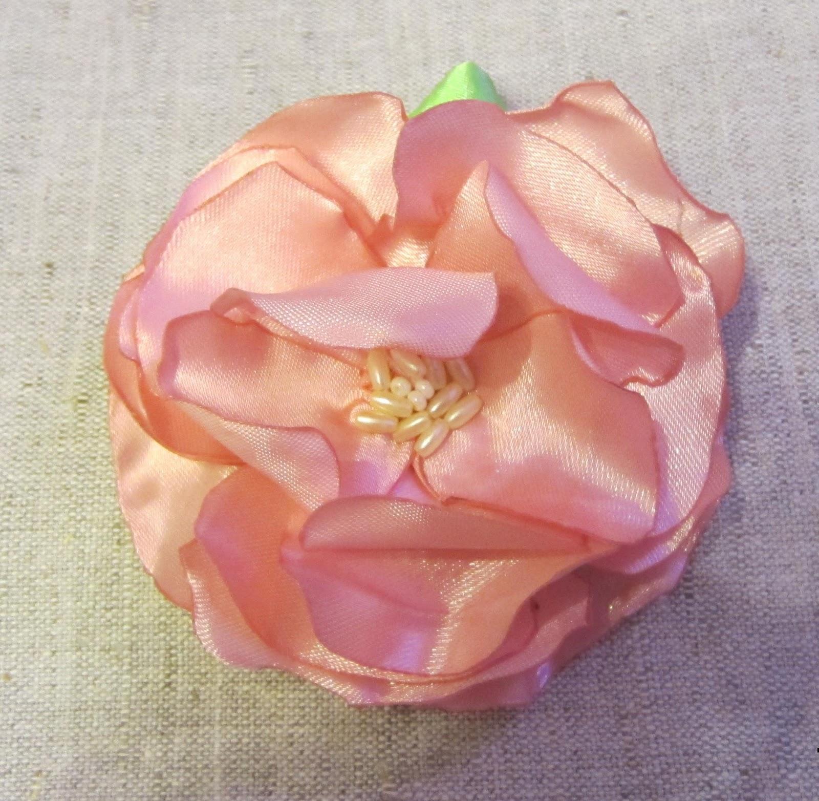 Цветы из семейства розоцветных