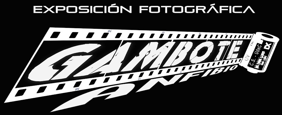 Expedición Fotográfica - GAMBOTE ANFIBIO