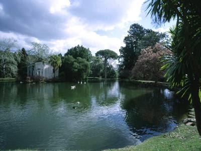 Passeggiare tra parchi giardini e castelli la reggia di caserta - Giardini reggia di caserta ...