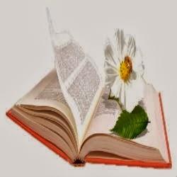 Библиолужайка