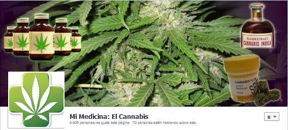Todo sobre el Cannabis como Medicamento