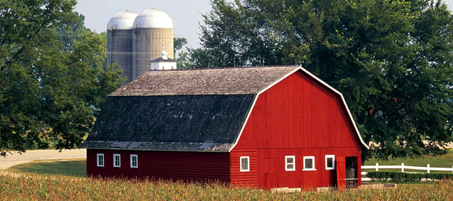 DiurnaLearn: Why Are Barns Red?