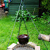 Thrifty Garden - Homemade Campfire Tripod