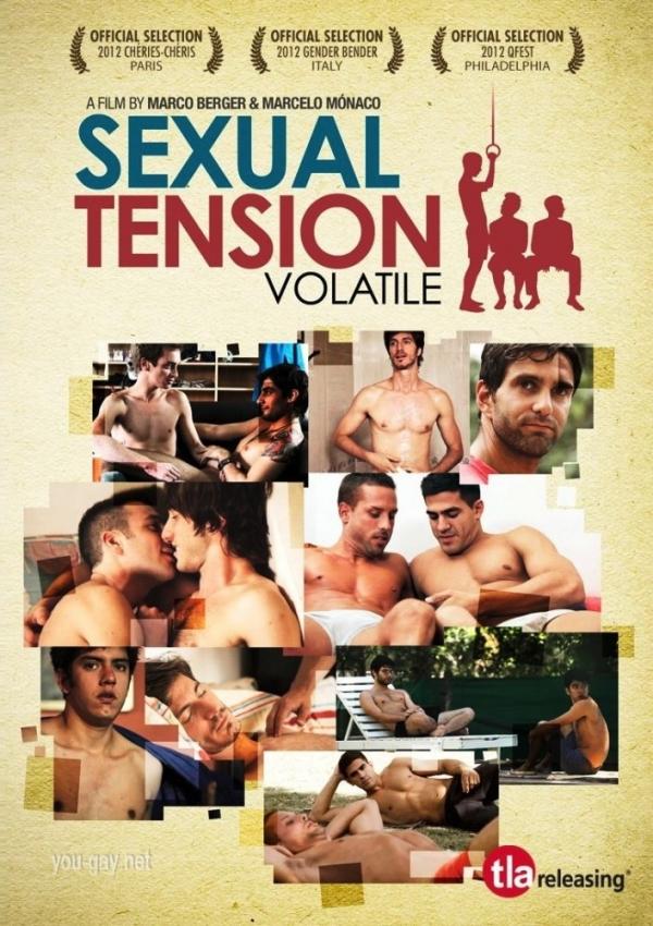 Сексуальное Напряжение: Взрывоопасный / Sexual Tension: Volatile / 2012.