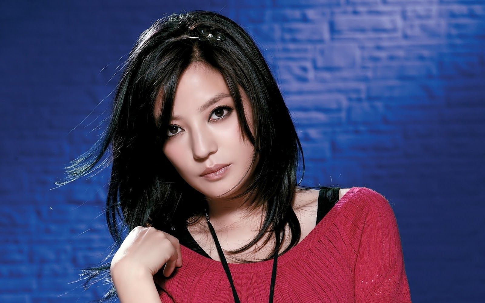 Zhao Wei Net Worth