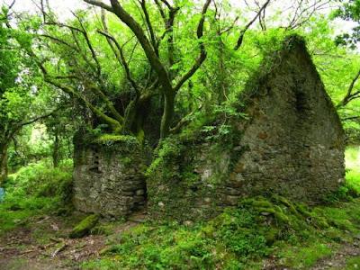 Caminho de Kerry entre Sneem e Kenmare na Irlanda