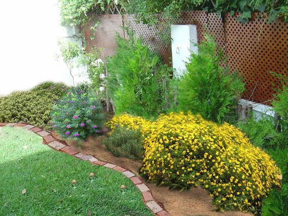 Arte y jardiner a el cuidado de arbustos y plantas for Arbustos con flores para jardin