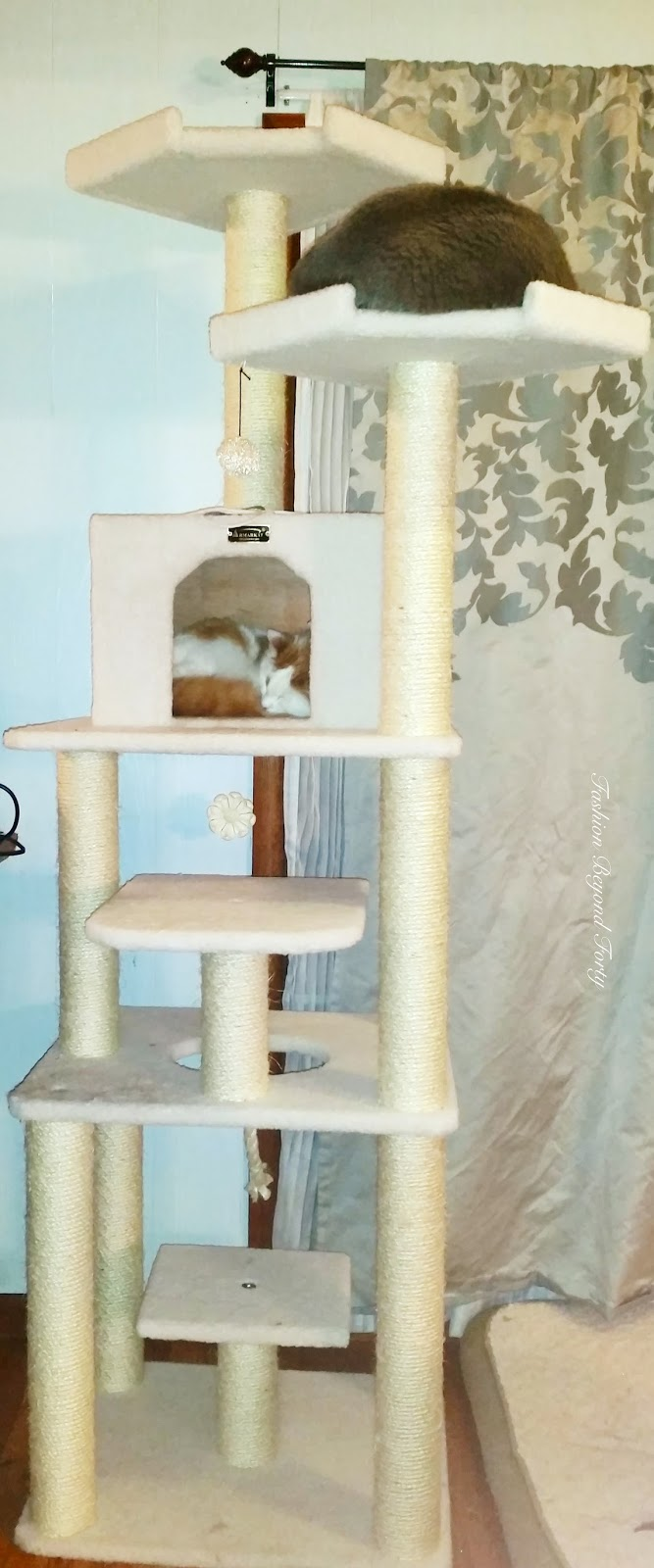 Armarkat Cat Tree from Chewy.com