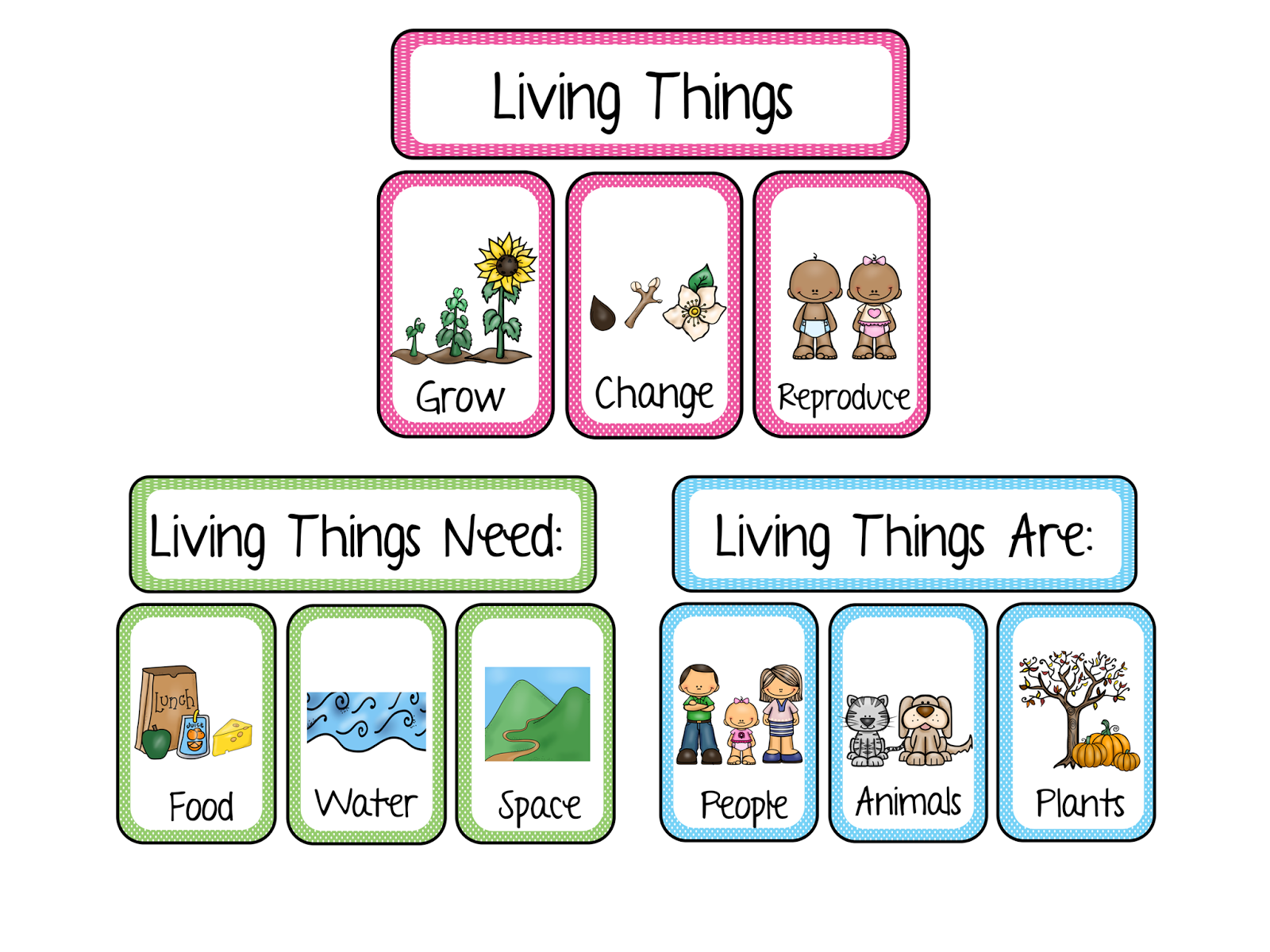 worksheet Living Vs Nonliving Worksheet living nonliving worm investigation sunny and bright in primary you can grab my vs packet here
