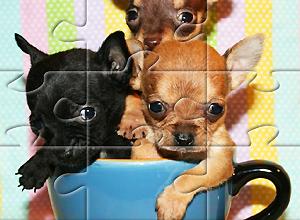 Puzzles de perros
