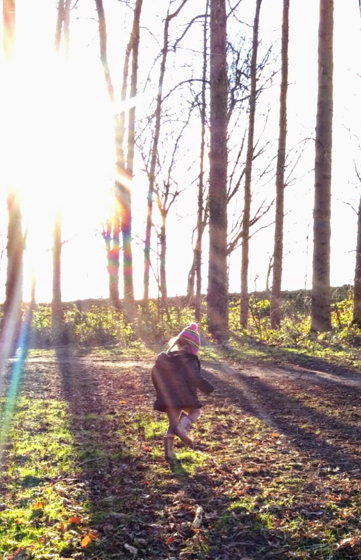 winter sun fun in the woods