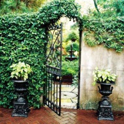 Puertas que se abren al maravilloso jard n plantas - Puertas de hierro para jardin ...