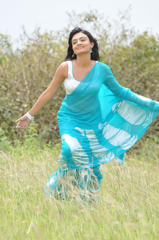 Nikitha Narayan Cool Saree Stills Nikitha Narayan Hot Saree Photos cleavage