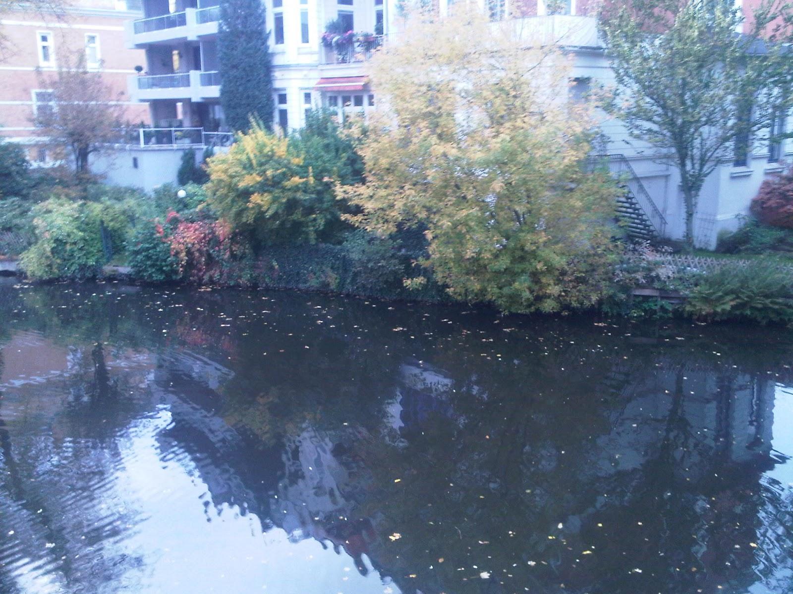 Fleet in Uhlenhorst - Wasserspiegelung - Herbstlaub