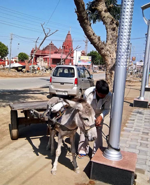 cart driven by a donkey