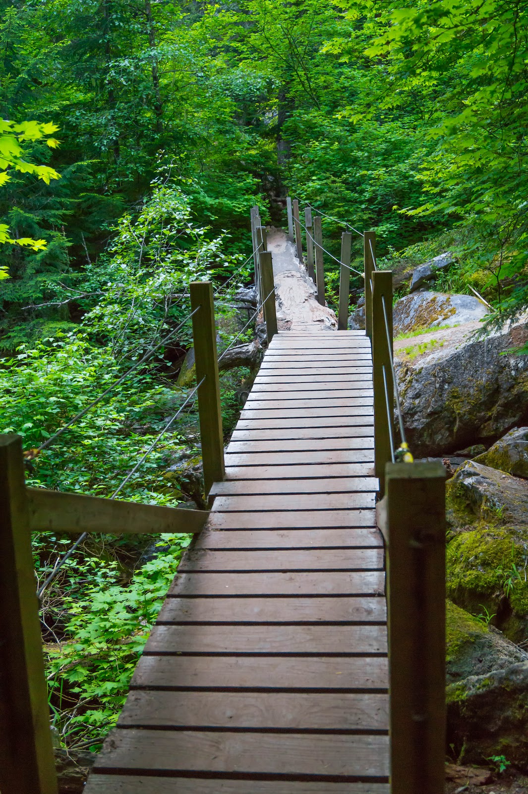 В одном месте мы переходим по мосту на другую сторону ручья.