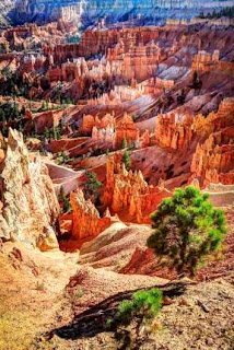 Bryce Canyon National Park (Best Honeymoon Destinations In USA) 3
