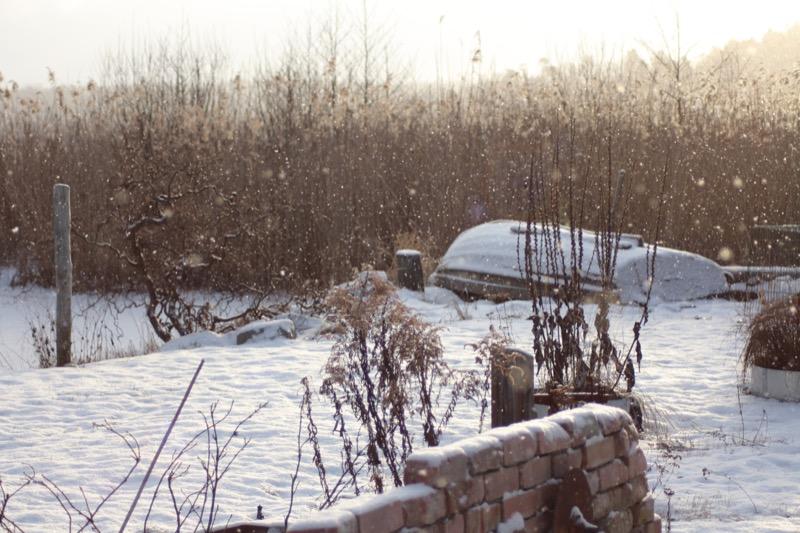 Mycket annat & lite betong: Vintern har kommit