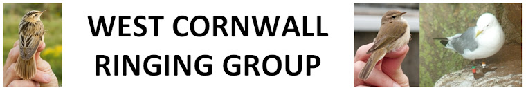 West Cornwall Ringing Group