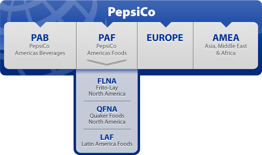 Visible Business Pepsico Structure
