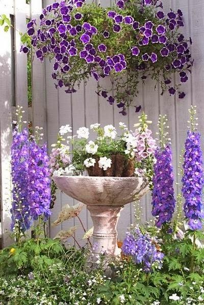 ideias sobre jardins : ideias sobre jardins:Mais de 1000 ideias sobre Jardins Secretos no Pinterest