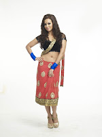 Sana Khan Hot Photo Bigg Boss 6