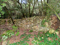 Restes de murs de pedra seca, testimoni d'antics conreus